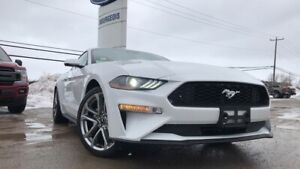 2019 Ford Mustang COUPE PREMIUM 2.3L I4 ECO 200A