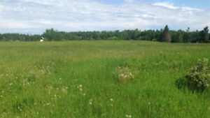 Build Your Dream Home On This 3.48 Acre Parcel of Land