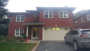 Bright and Spacious Basement Apartment $1450 Utilities Incld