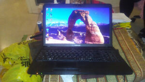 Toshiba Satellite C650D-025 Laptop