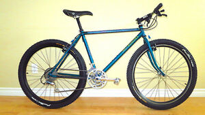 "1993 Fat Chance Wicked Lite 18"" frame.  Rare MTB."