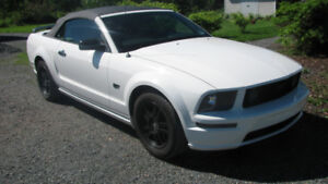 2006 Ford Mustang GT Convertible Last Chance before Storage