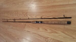 Daiwa  10.6' Heartland fishing rod