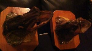 BASS AND PIKE FISH HEADS MOUNTED ON WOOD PLAK ODDITY Stratford Kitchener Area image 5