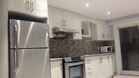 New Renovated WalkOut Basement Aapartment For Rent In Vaughan