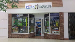 Reefs N Reptiles NOW at the Frontenac mall