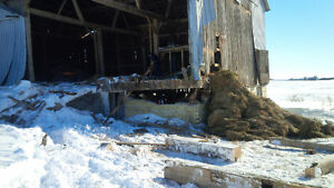 Barn Removal / Demolition *WE BUY BARNS* Kitchener / Waterloo Kitchener Area image 4