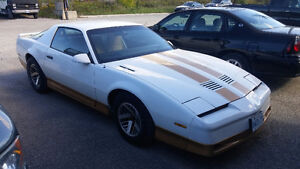 1984 V8 Firebird (comes with 3 day old pizza and half a coke)