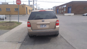 Ford freestyle 2007.
