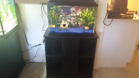 complete fish tank with stand