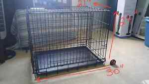 Dog crate by pet lodge with tray