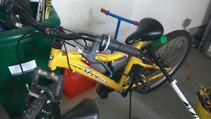 """24"""" Sportek Bike"""
