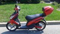 Vélo scooter électrique Gemelli 500W