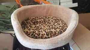 Cats bed from petsmart