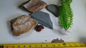 aquarium rock and decor Kitchener / Waterloo Kitchener Area image 1