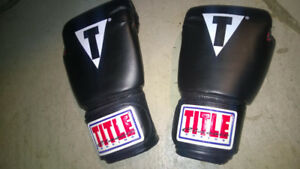Title Classic Pro Style Training boxing Gloves  12 oz.