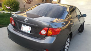 2009  TOYOTA COROLLA ,ACCIDENT FREE,NO CLAIMS,NO HAIL DAMAGE