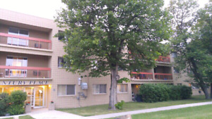 ★[Oct15][Nov1st] Spacious & Bright 2Bedroom sublet Apt for Rent★