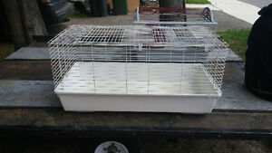 cage pour animaux/ Animal cages