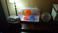 Hamster Cage, food, bedding, travel cage, etc.