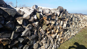Firewood For Sale in Cainsville - $10 & $100