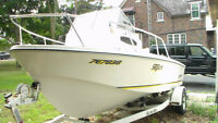"Boston Whaler ""Style"" Boat For Sale"