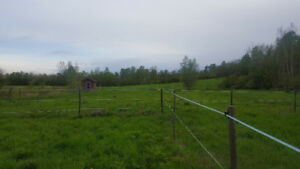 5 Acre Horse Property For Rent With House And Barn