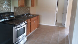 very nice apartment for rent on walkerville area $600 plus hydro Windsor Region Ontario image 1