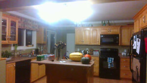 One bedroom in beautiful home, utilities included St. John's Newfoundland image 2