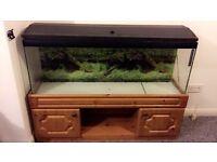 Fish tank £70