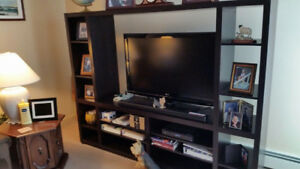 TV stand/shelving