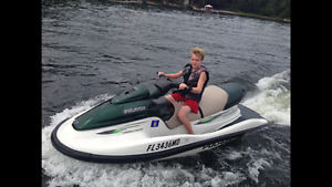 4 SEATER WATER CRAFT CAN TOW 2 legally POLARIS GENESIS