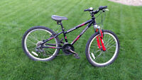 "24"" Boy's Norco Samurai Mountain Bike"