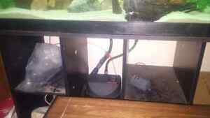 60 g aquarium London Ontario image 4