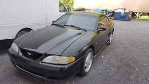 1995 Mustang in good working order