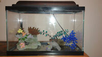 10 gallon fish tank with all the accessories