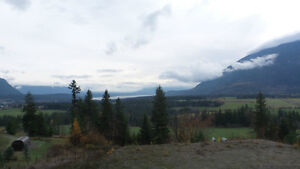 Almost 2 acres Tappen with view of the Shuswap lake and valley!!