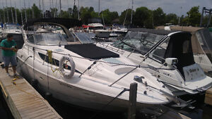 Professional Boat Cleaning! London Ontario image 4