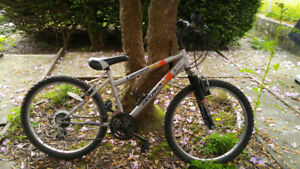Carrera junior mountain bike