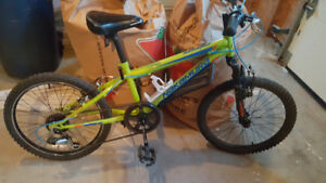 20 inch youth bike $65