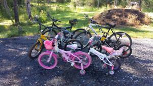 Bikes for sale cheap
