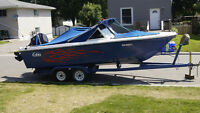 25ft bowrider with 225 mercury outboard & trailer