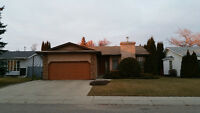 Beautiful bungalow in Erindale for rent.  1350 sqft bungalow,