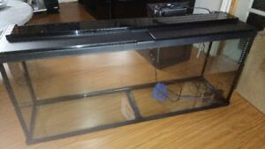 NEW Fish Tank with all accessories