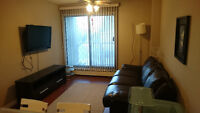 Fully Renovated Furnitured 1 BR Condo Walking distance to DT