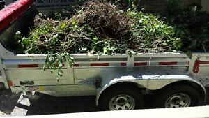 Spring / fall Clean Up Available for Properties / Lawn Clean Up London Ontario image 4