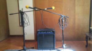 Music performance mics,stand and ampli