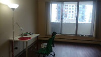 1 bedroom suite in downtown for June and July
