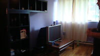 RENOVATED 4 1/2 FOR RENT