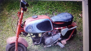 Wanted Honda  minibike like one in picture for project